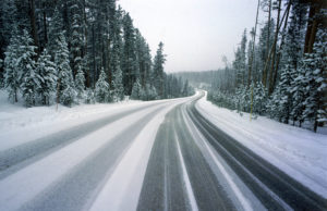 Snowy roadway between trees with tire tracks